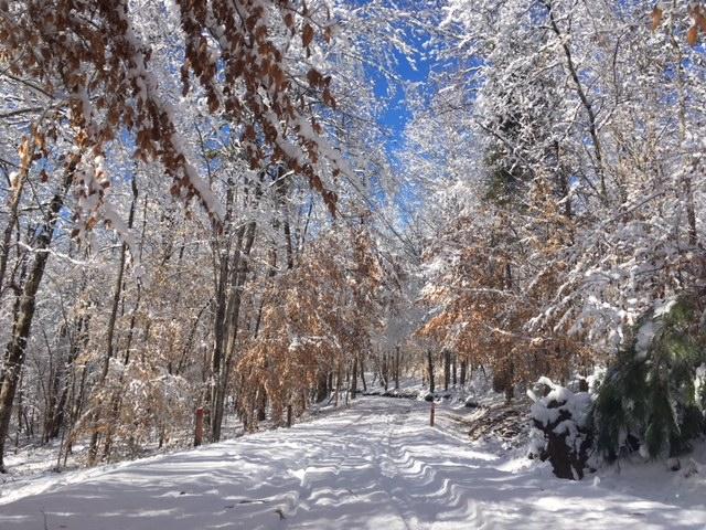 Snow+day+update