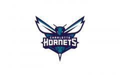 New luck Hornets